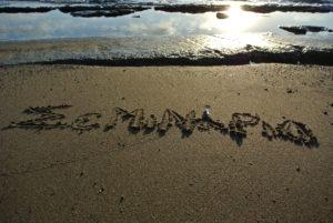 """""""σεμινάριο"""" γραμμένο στην άμμο"""